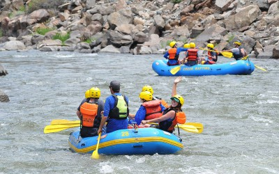 Royal-Gorge-Big-Horn-Sheep-Canyon---Arkansas-River-Rafting-Trips-18