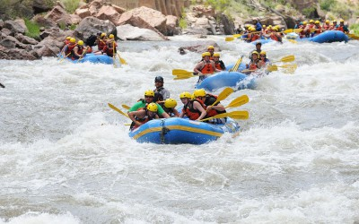 Royal-Gorge-Big-Horn-Sheep-Canyon---Arkansas-River-Rafting-Trips-20