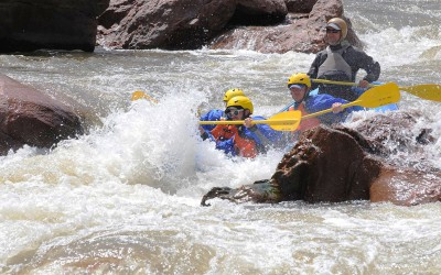 Royal-Gorge-Big-Horn-Sheep-Canyon---Arkansas-River-Rafting-Trips-21