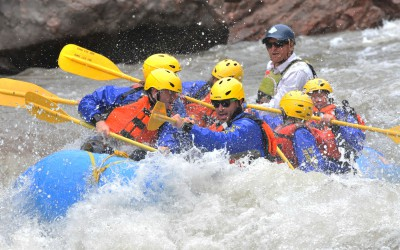 Royal-Gorge-Big-Horn-Sheep-Canyon---Arkansas-River-Rafting-Trips-25